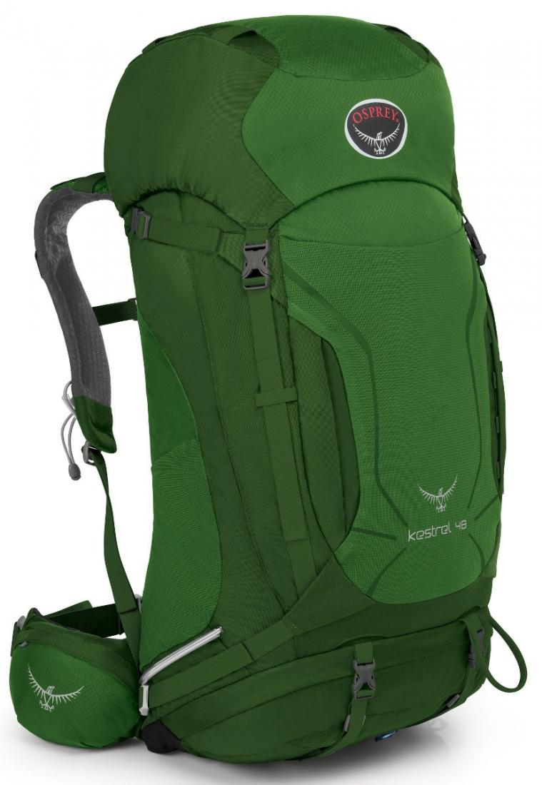 Osprey Рюкзак Kestrel 48 (M-L, Jungle Green, ,) цена 2017