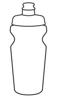 Бутылка Pegasus