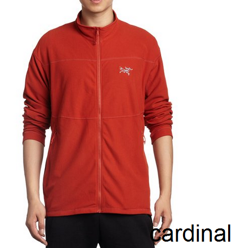 Arcteryx Куртка Delta LT муж.