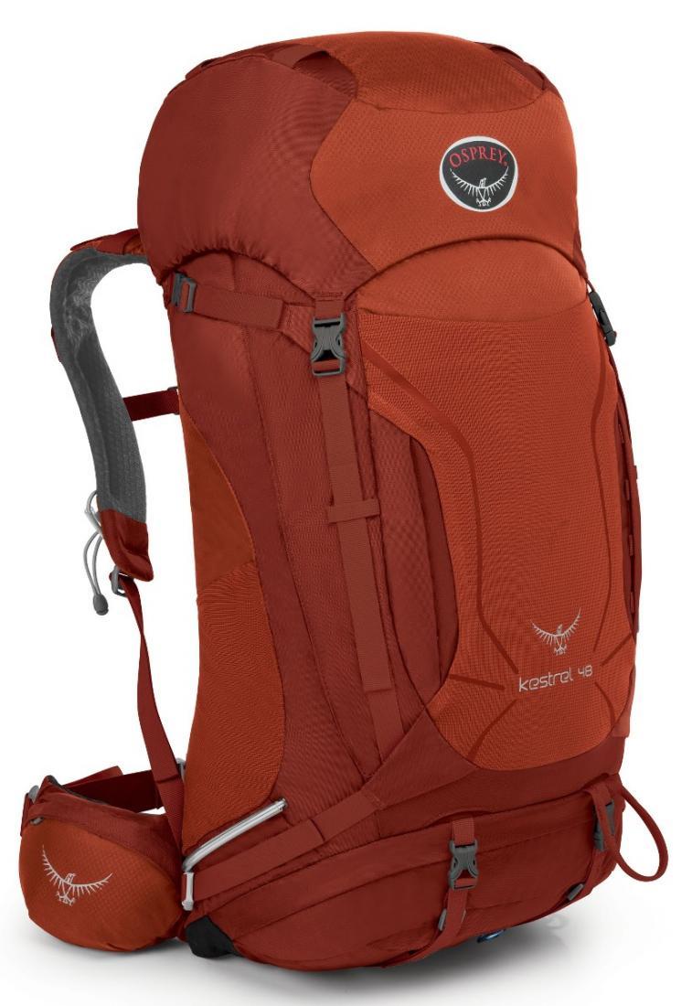 Рюкзак Kestrel 48Туристические, треккинговые<br><br> Универсальные всесезонные рюкзаки серии Kestrel разработаны для самых разных видов Outdoor активности. Специальная накидка от дождя защитит ...<br><br>Цвет: Темно-красный<br>Размер: 50 л