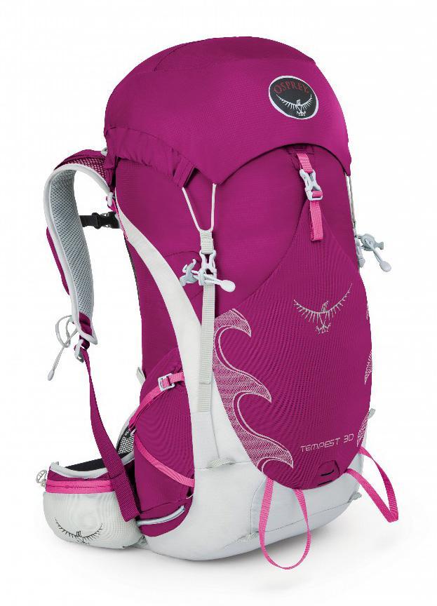 Рюкзак Tempest 30Рюкзаки<br>Tempest   женская версия рюкзаков иконической серии Talon, разработанная с учетом анатомических особенностей женской фигуры. Tempest 30   это рюкзак...<br><br>Цвет: Фиолетовый<br>Размер: 30 л