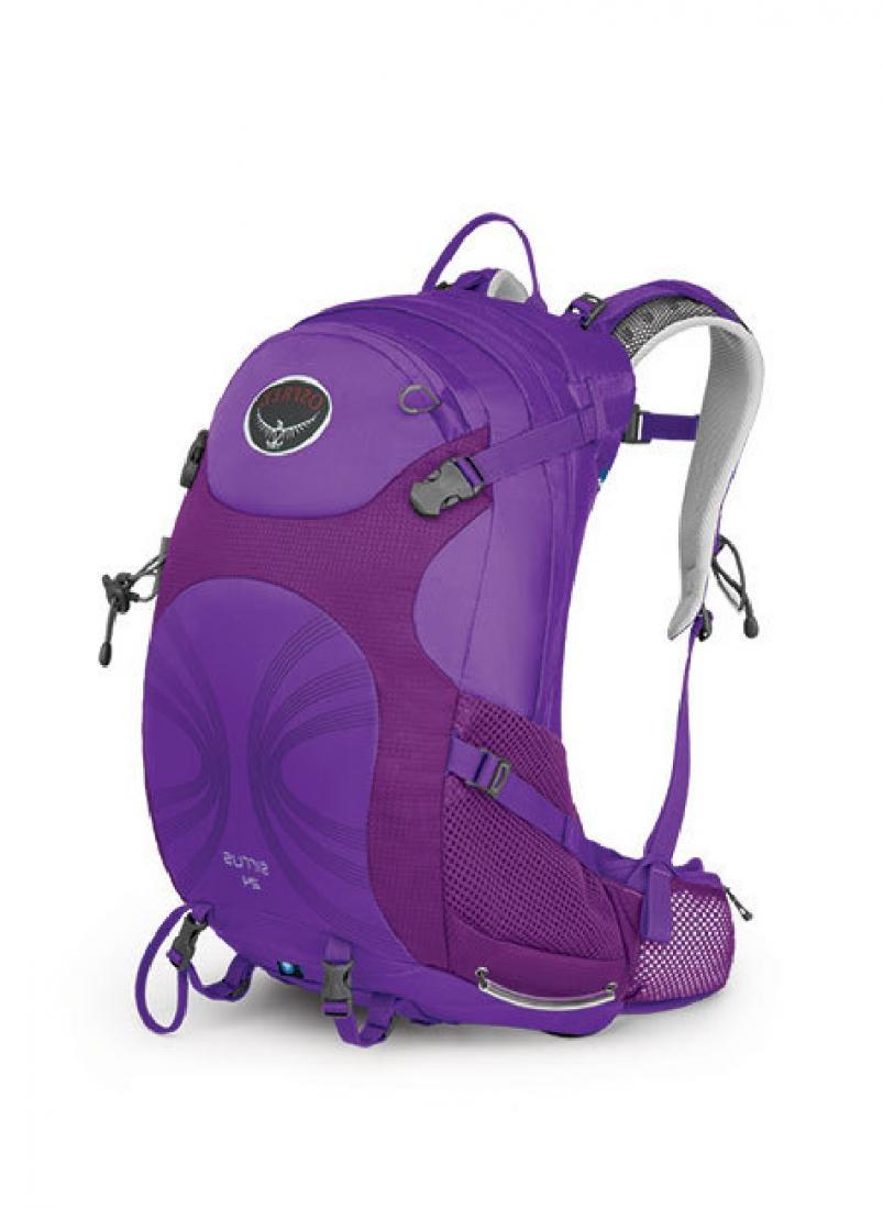 Рюкзак Sirrus 24Рюкзаки<br><br><br>Цвет: Фиолетовый<br>Размер: 22 л