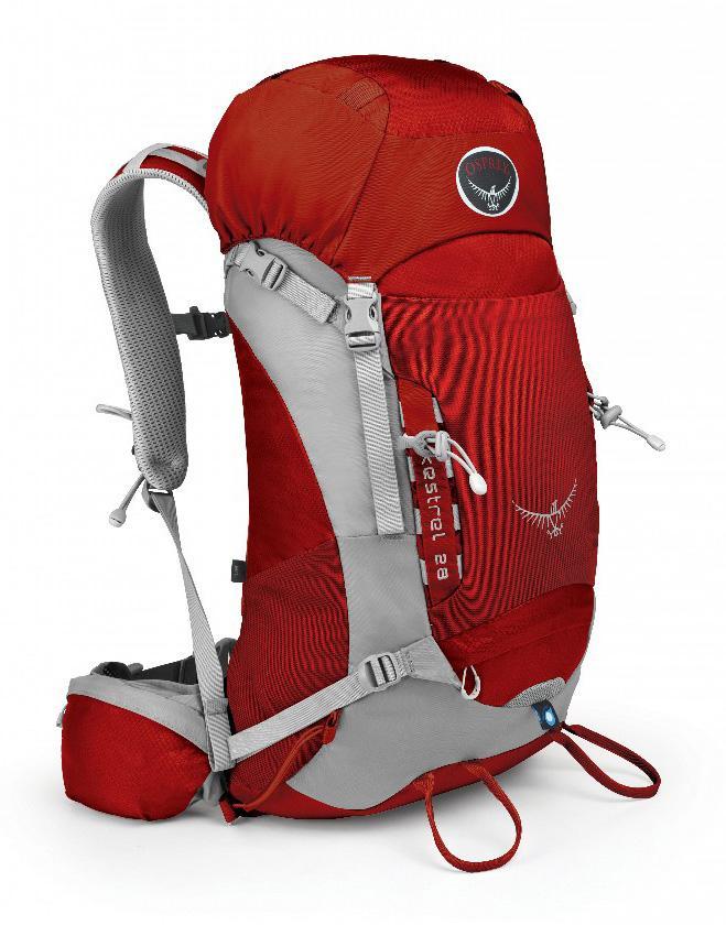 Рюкзак Kestrel 28Рюкзаки<br><br><br>Цвет: Красный<br>Размер: 26 л