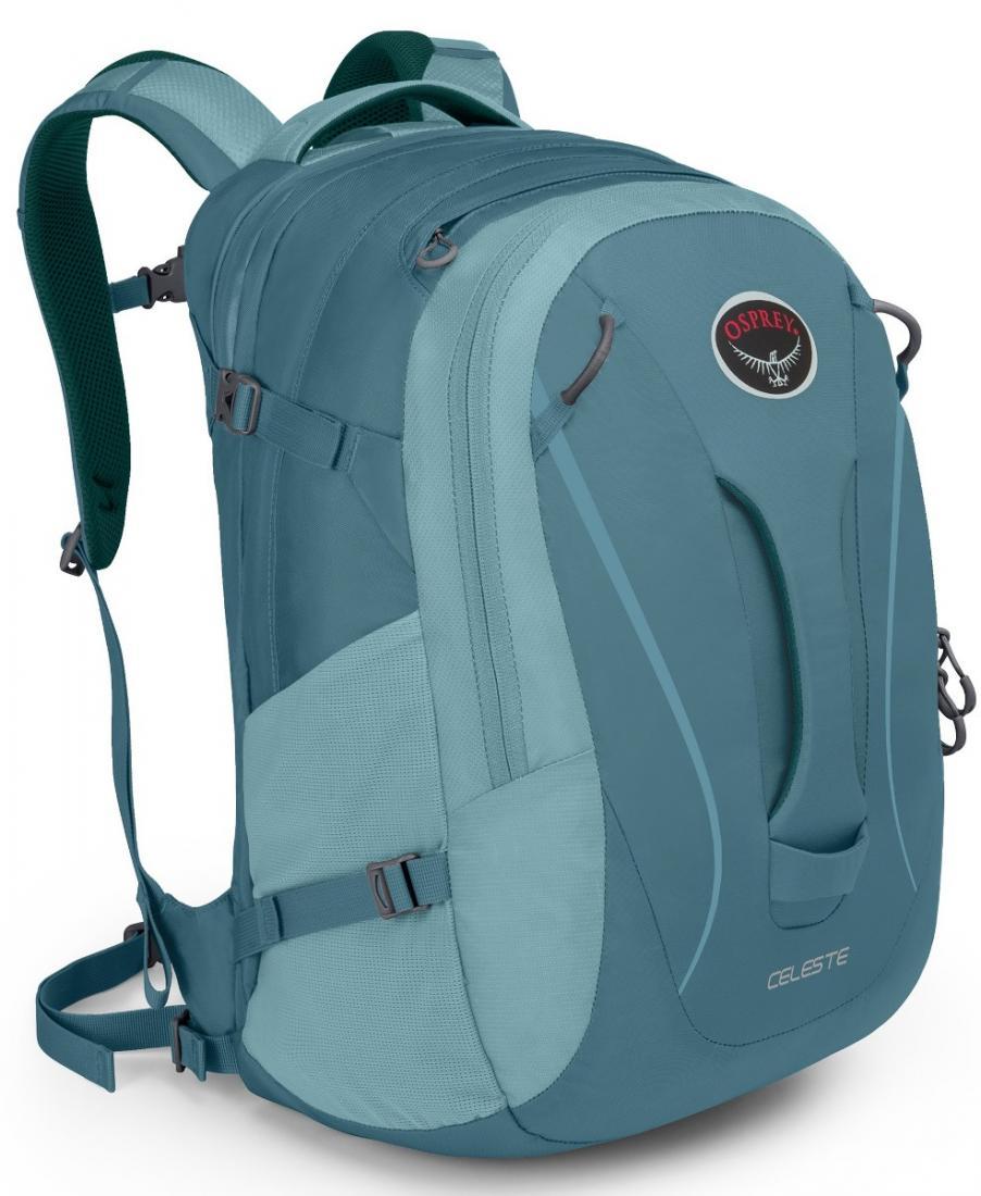 Рюкзак Celeste 29Рюкзаки<br><br>Городской женский рюкзак, воплотивший в своем дизайне традиции outdoor и многолетний опыт конструирования рюкзаков Osprey. Прочный, качественный и функциональный, с удобной внутренней организацией, он создает непревзойденный комфорт при переноске. Ле...<br><br>Цвет: Темно-фиолетовый<br>Размер: 29 л