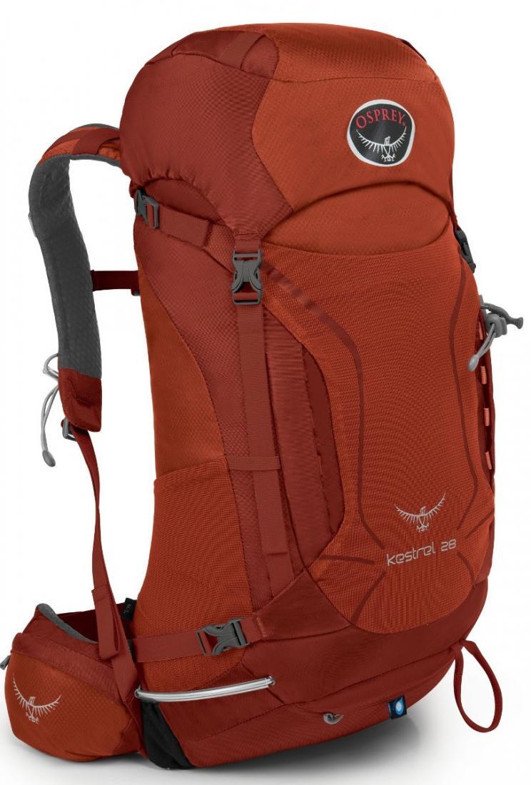 Рюкзак Kestrel 28Рюкзаки<br><br>Универсальные всесезонные рюкзаки серии Kestrel разработаны для самых разных видов Outdoor активности. Специальная накидка от дождя защитит рюкзак и вещи от промокания. Хорошо вентилируемая регулируемая спина AirSpeed™ позволяет сбалансировать центр...<br><br>Цвет: Темно-красный<br>Размер: 25 л