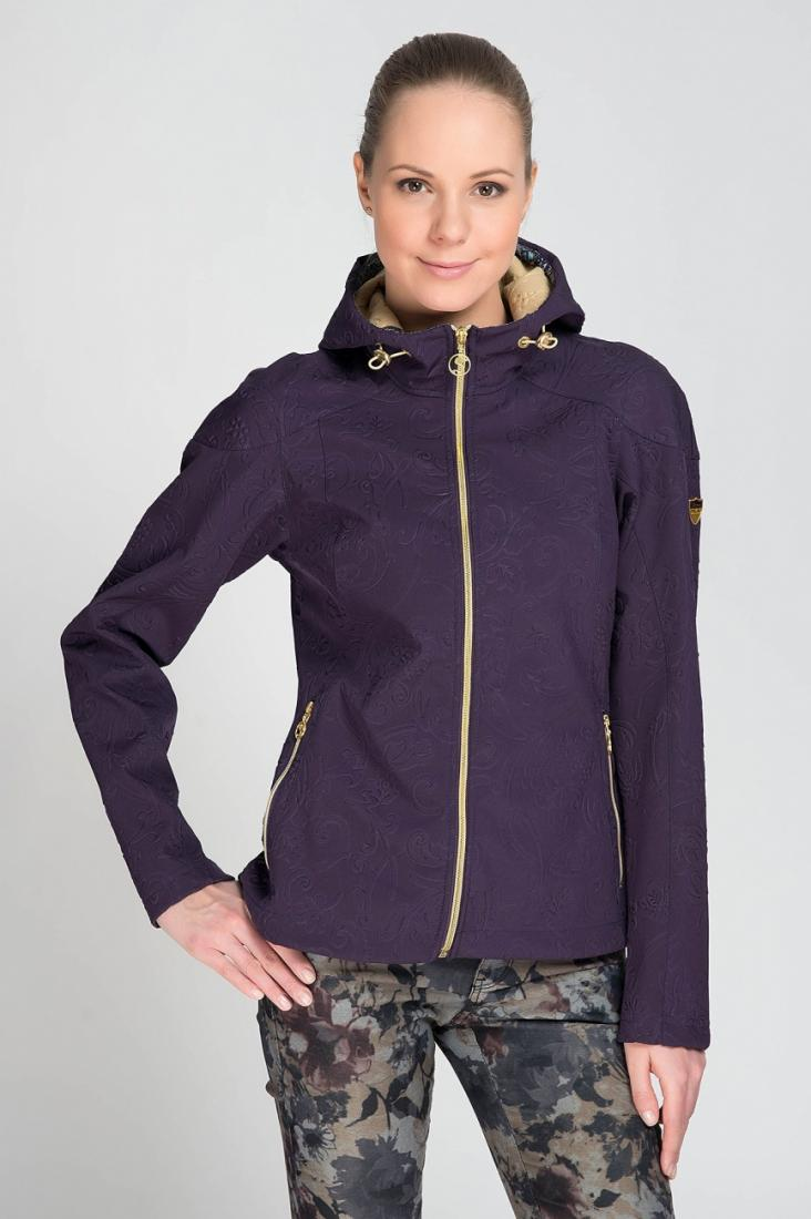 Stayer Ветровка Soft Shell 409499 (48, Т.Фиолетовый., ,) soft shell 001 apex jacket