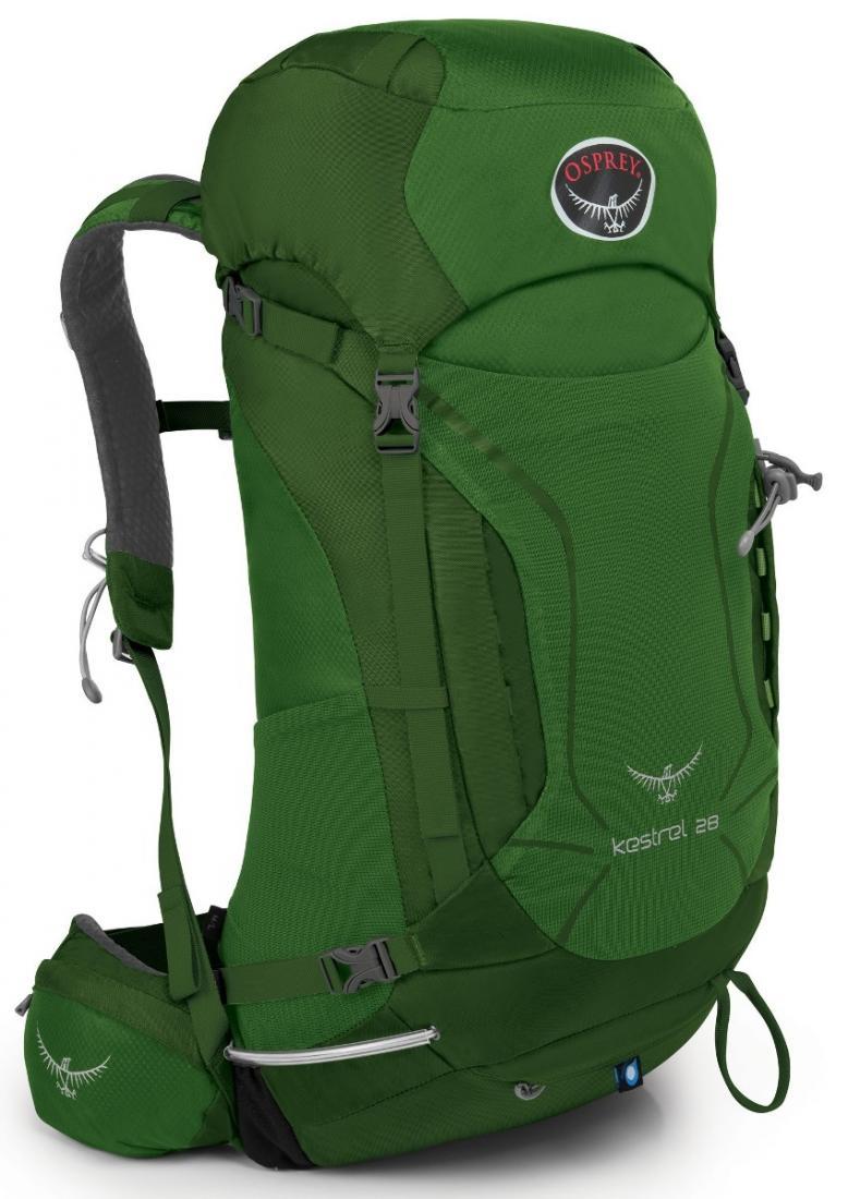 Рюкзак Kestrel 28Рюкзаки<br><br>Универсальные всесезонные рюкзаки серии Kestrel разработаны для самых разных видов Outdoor активности. Специальная накидка от дождя защитит рюкзак и вещи от промокания. Хорошо вентилируемая регулируемая спина AirSpeed™ позволяет сбалансировать центр...<br><br>Цвет: Темно-зеленый<br>Размер: 25 л