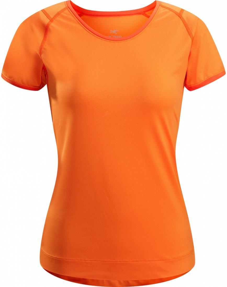 Футболка Mentum Tee SS жен.Футболки, поло<br>ДИЗАЙН: Простая, легкая и удобная футболка в повседневном стиле   однотонная с окантовкой, из отлично тянущейся ткани. <br> <br>НАЗНАЧЕНИЕ: Х...<br><br>Цвет: Оранжевый<br>Размер: M