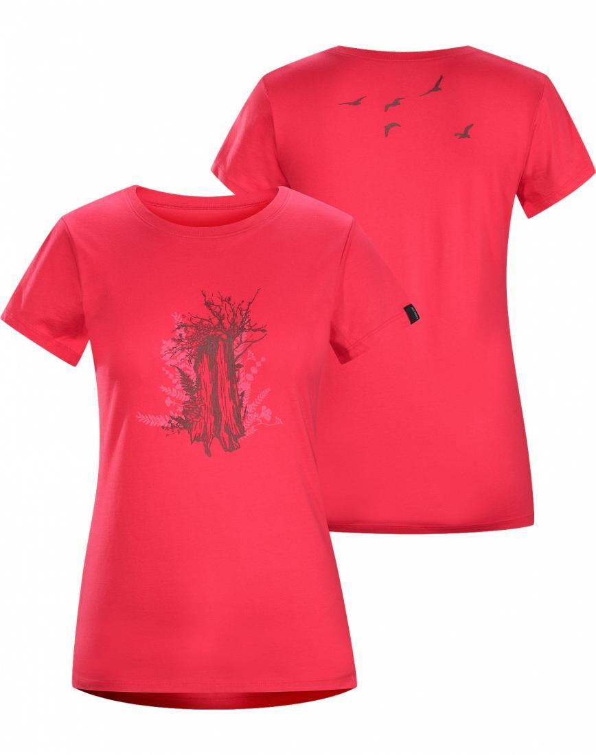 Футболка Trunk T-Shirt SS жен.Футболки, поло<br>ДИЗАЙН: Футболка из хлопка с короткими рукавами и с рисунком, нанесенным с помощью трафарета и вытравной печати. Один из маршрутов похода ...<br><br>Цвет: Розовый<br>Размер: S