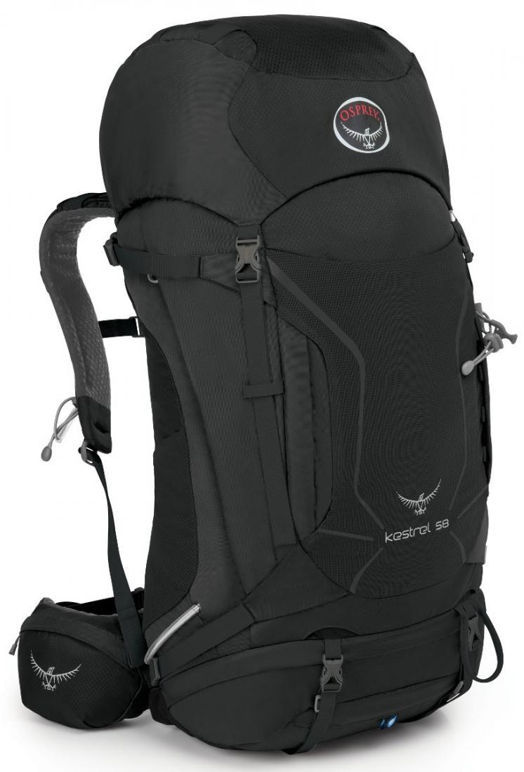 Рюкзак Kestrel 58Рюкзаки<br><br> Универсальные всесезонные рюкзаки серии Kestrel разработаны для самых разных видов Outdoor активности. Специальная накидка от дождя защитит ...<br><br>Цвет: Темно-серый<br>Размер: 60 л