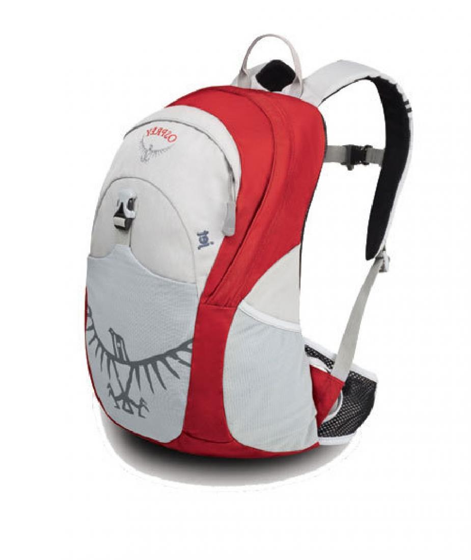 Рюкзак Jet 18Спортивные<br>Хотите вдохновить ребенка на занятия различными видами outdoor активности? Jet 18 станет вашим верным помощником. Имея рюкзак с теми же функцио...<br><br>Цвет: Красный<br>Размер: 18 л