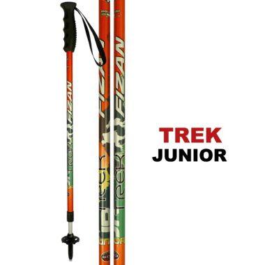 Палки трекинговые TREK JRТреккинговые палки<br><br><br>Цвет: Оранжевый<br>Размер: None