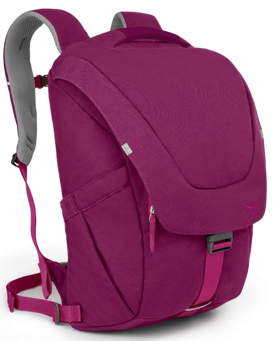 Рюкзак Flap Jill PackРюкзаки<br><br>Стильный и удобный рюкзак Flap Jill Pack, сконструированный с учетом строения женской фигуры, имеет несколько функциональных особенностей, способных облегчить «жизнь на ходу». Мягкие лямки и вентилируемая конструкция спины с сеткой подарят комфорт н...<br><br>Цвет: Фиолетовый<br>Размер: 24 л