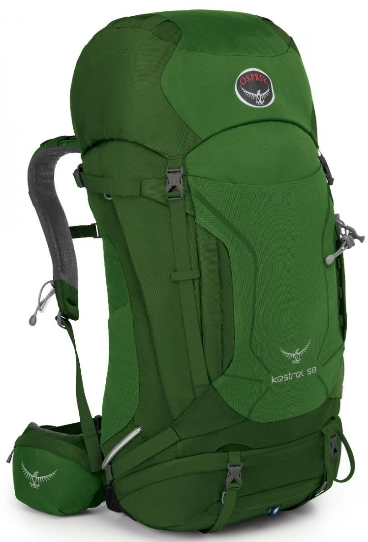 Osprey Рюкзак Kestrel 58 (S-M, Jungle Green, ,) цена 2017