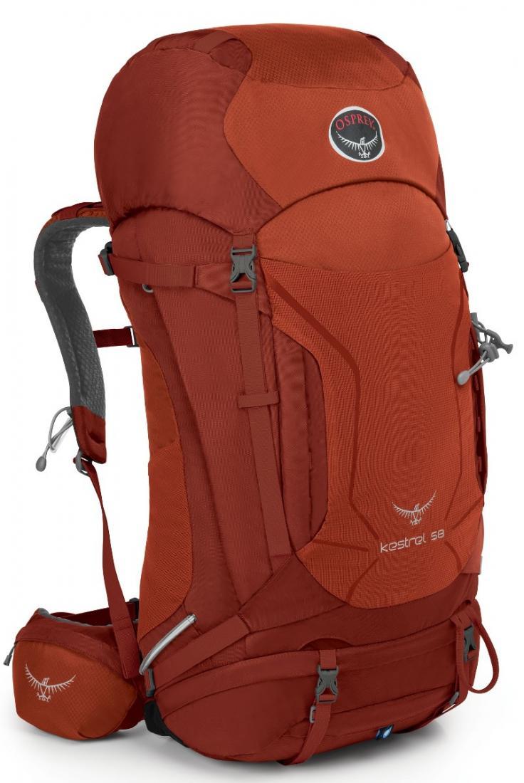 Рюкзак Kestrel 58Рюкзаки<br><br> Универсальные всесезонные рюкзаки серии Kestrel разработаны для самых разных видов Outdoor активности. Специальная накидка от дождя защитит рюкзак и вещи от промокания. Хорошо вентилируемая регулируемая спина AirSpeed™ позволяет сбалансировать цент...<br><br>Цвет: Темно-красный<br>Размер: 60 л