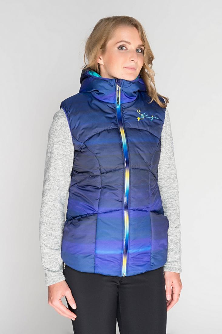 Жилет 525433Жилеты<br>Утепленный жилет - незаменимая вещь для прогулок в ясную зимнюю погоду. Или для катания на коньках. Или для строительства снежных крепостей...<br><br>Цвет: Синий<br>Размер: 42