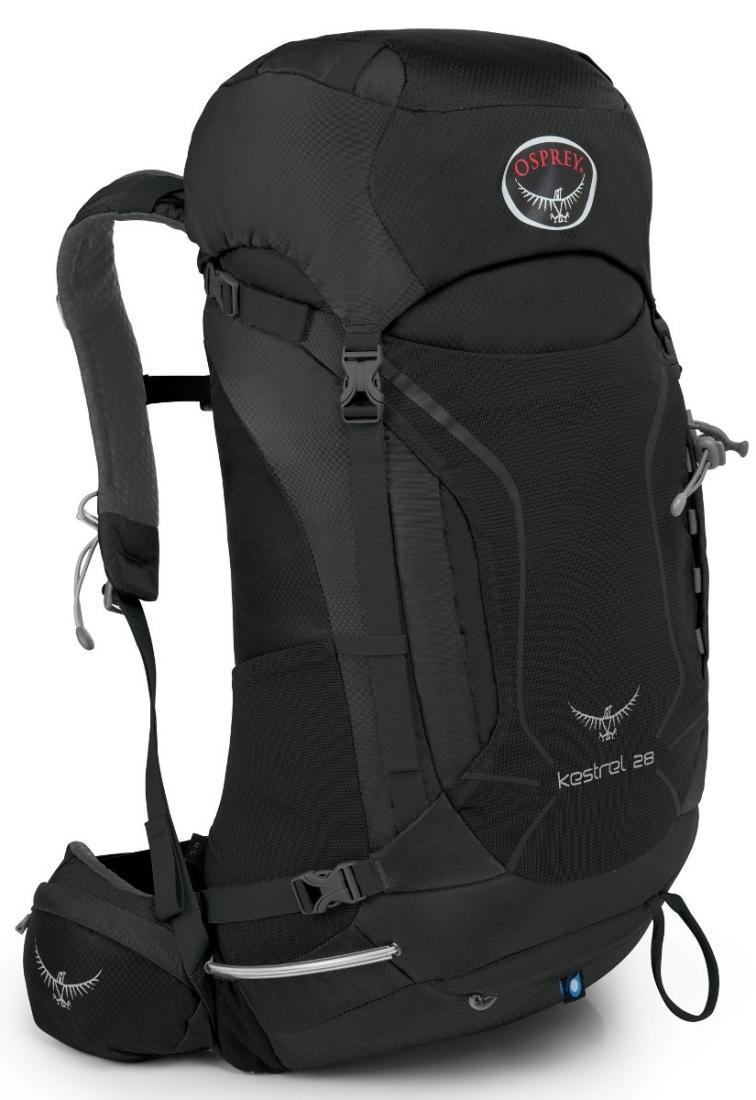 Рюкзак Kestrel 28Рюкзаки<br><br>Универсальные всесезонные рюкзаки серии Kestrel разработаны для самых разных видов Outdoor активности. Специальная накидка от дождя защитит рюкзак и вещи от промокания. Хорошо вентилируемая регулируемая спина AirSpeed™ позволяет сбалансировать центр...<br><br>Цвет: Темно-серый<br>Размер: 25 л