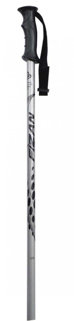 Палки горнолыжные X-TREME фото